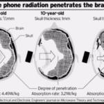 Jak záření z mobilních telefonů proniká do Mozku - Institute of Electronic; Žurnál inženýrů o mikrovlnné teorii a technikách
