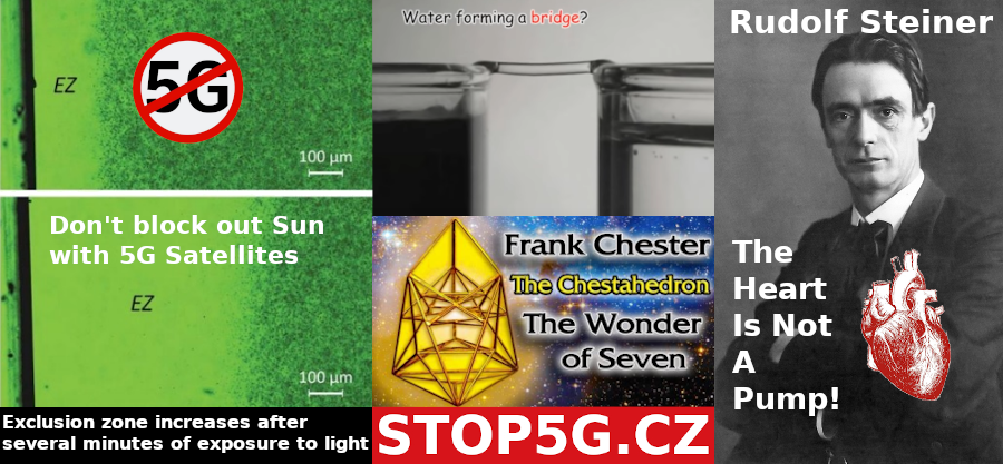 The Heart Is Not A Pump – Rudolf Steiner – Chestahedron – The Heart and Circulation: An Integrative Model – EZ Water – 5G – Sun