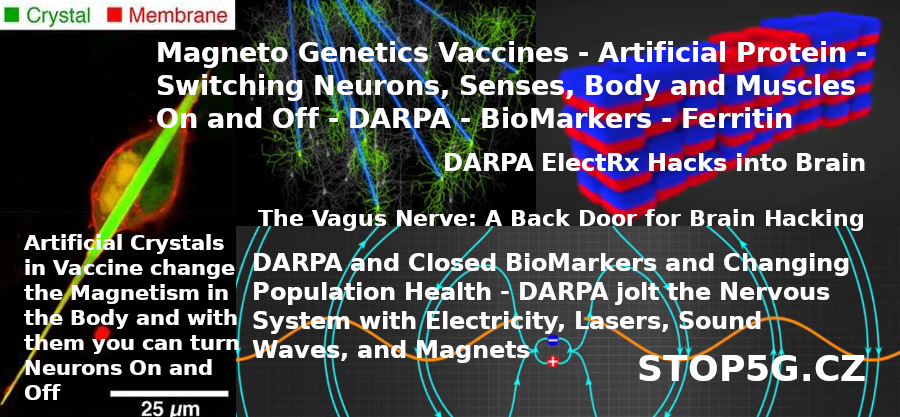 Magneto Genetics Vaccines – Artificial Protein – Switching Neurons, Senses, Body and Muscles On and Off – DARPA – BioMarkers – Ferritin